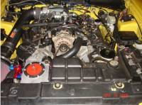 Ford Mustang 96-04 Dedicated Fuel System - Image 5